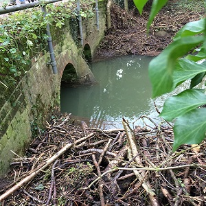 Crown Road Old Buckenham - Bridge cleared following concerns by local residents